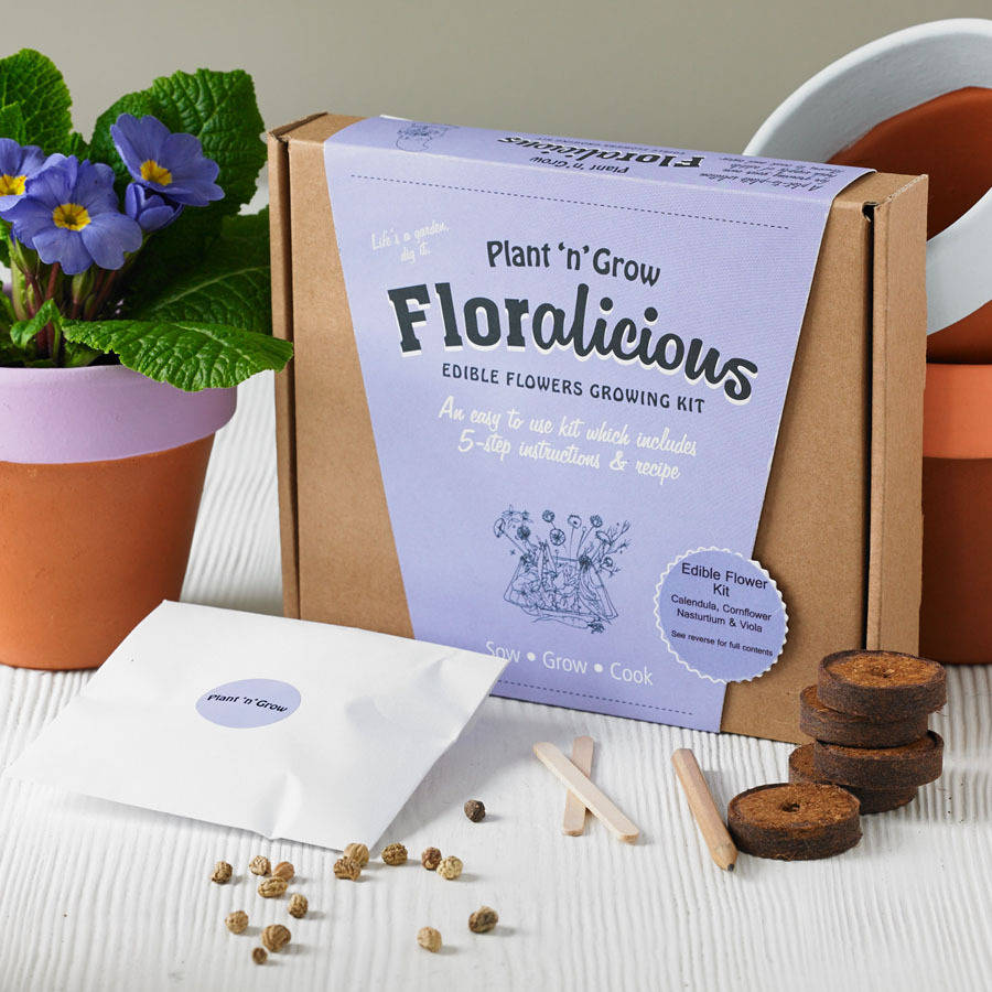 original_floralicious-edible-flower-growing-kit